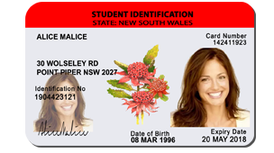 New Zealand Fake ID Card, Australian Fake Drivers License