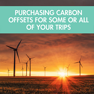 purchase carbon offsets