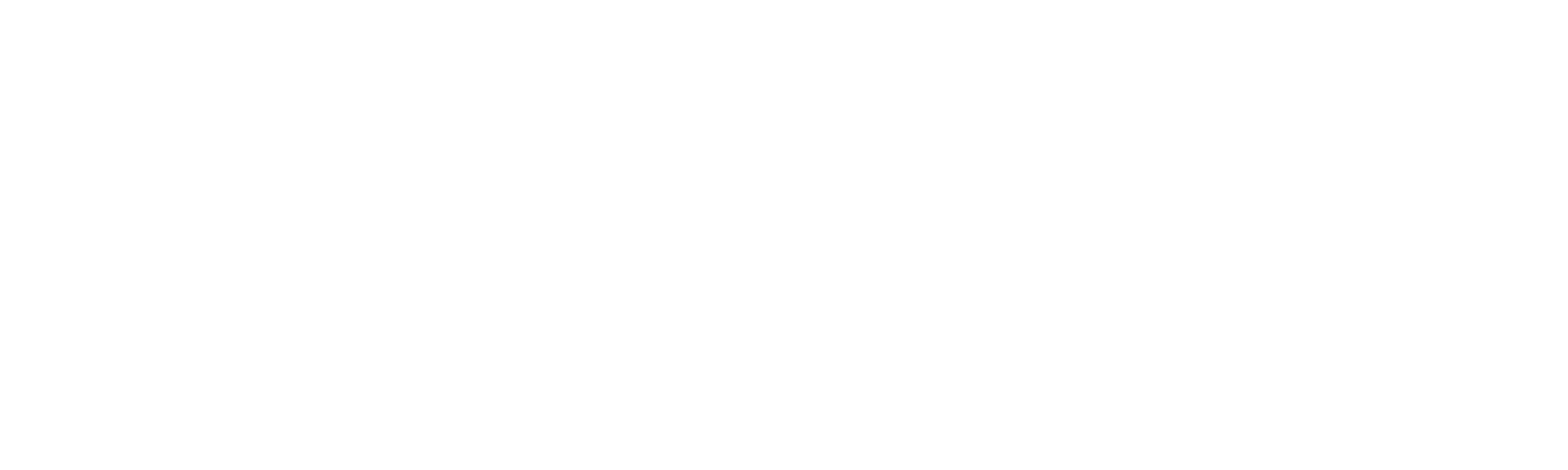 Logo Teach for Romania