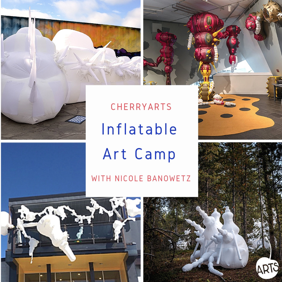 Art Camp Inflatable Images