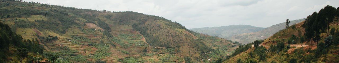 The beautiful rolling hills of Rwanda