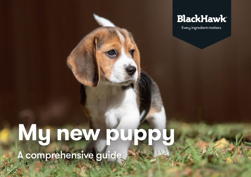 Black Hawk Puppy Guide