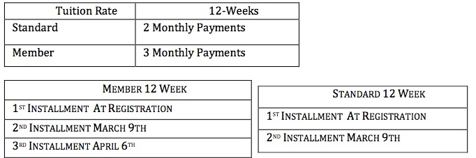 PAYMENT PLAN 12 WEEKS