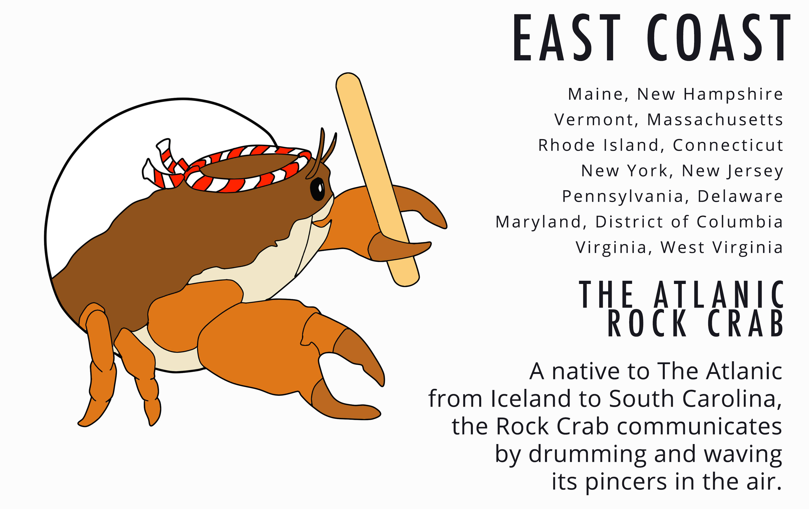 East Coast Rock Crab Card