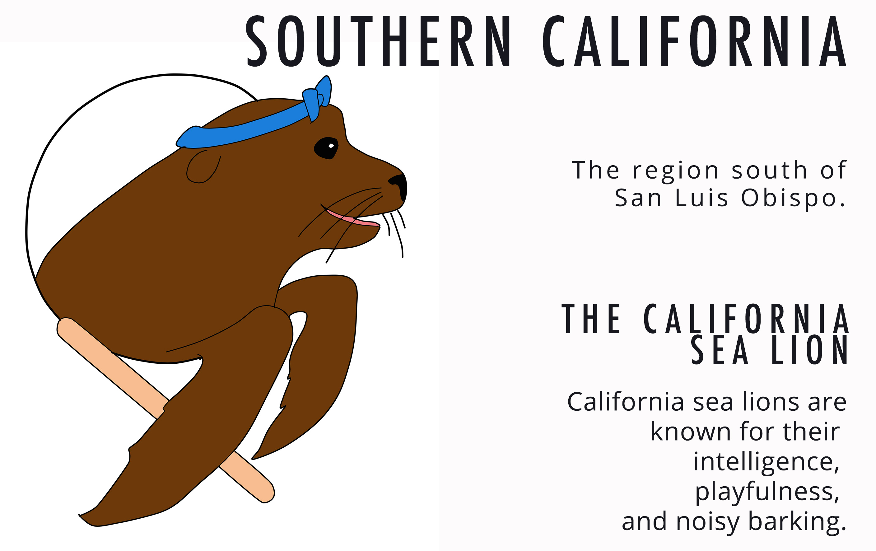 SoCal Sea Lion Card