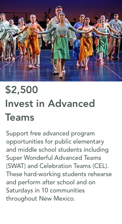 $2,500 Support a Residency Program