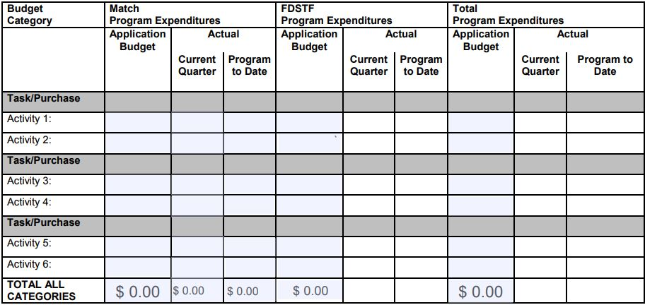 Budget and Financial Form