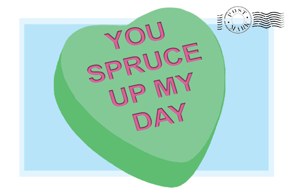 You Spruce Up My Day