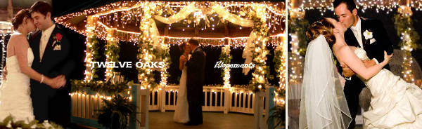 Cheap elopement weddings can be very special! Dance under our gazebo venue. A romantic first dance under the gazebo for two.